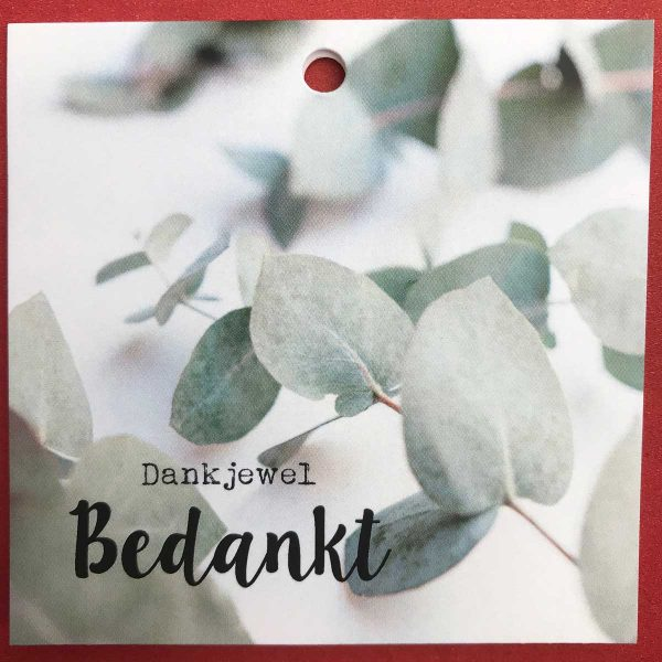 Kaartje 'Bedankt' Scheerhoorn Bloemen Leek