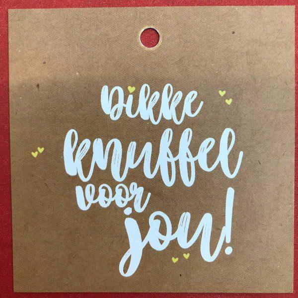 Kaartje 'Dikke knuffel' Scheerhoorn Bloemen Leek