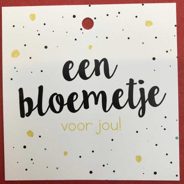 Kaartje 'Een Bloemetje' Scheerhoorn Bloemen Leek