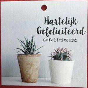 Kaartje 'Gefeliciteerd' Scheerhoorn Bloemen Leek