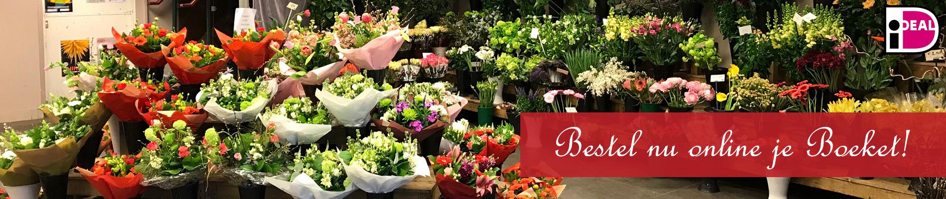 Online Bloemen & Boeketten bestellen - Scheerhoorn Bloemen Leek