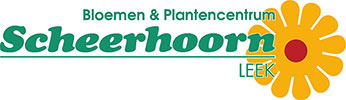 Scheerhoorn Bloemen